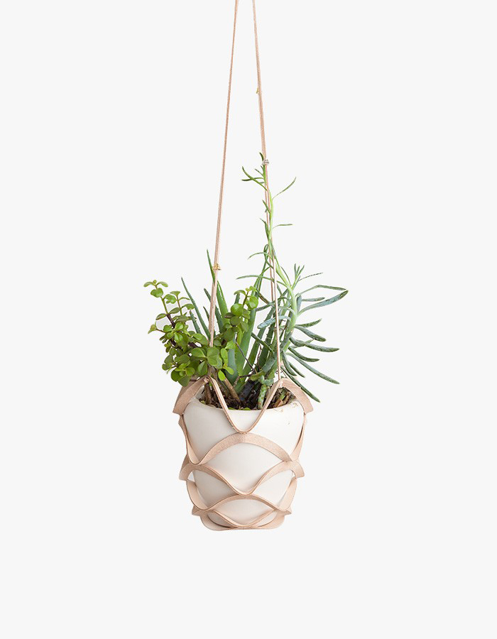 Plant Hanger by Cold Picnic